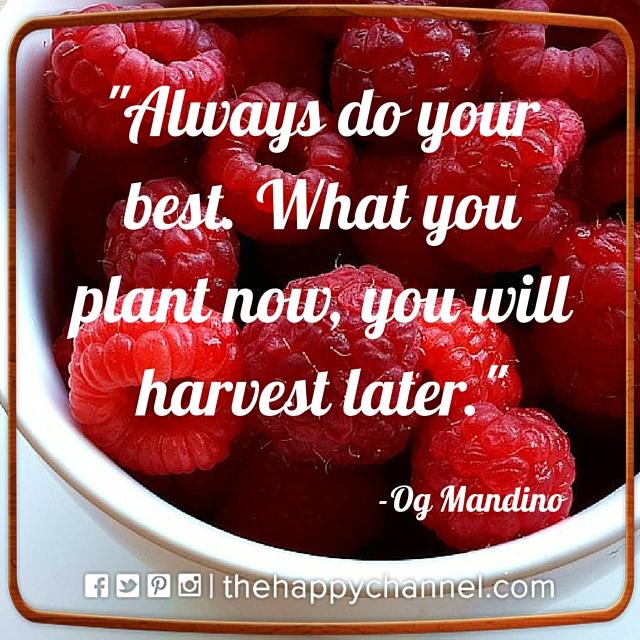 Always Do Your Best…