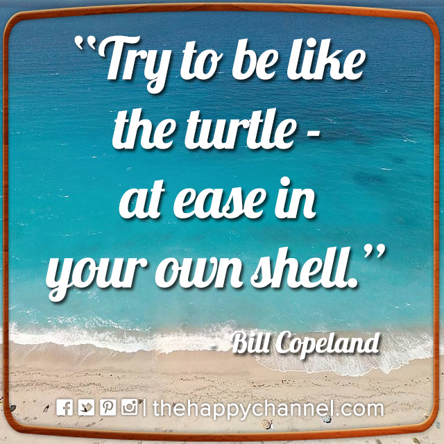 Be Like the Turtle…